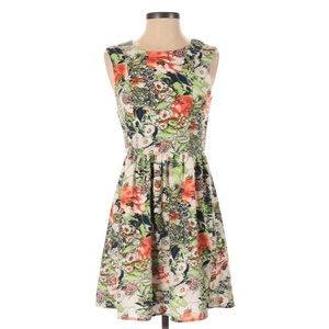 Anthro Everly Floral Fit& flare Dress Small